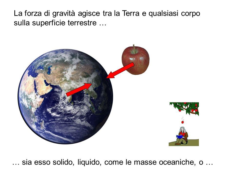 La forza di gravità agisce tra la Terra e qualsiasi corpo sulla superficie terrestre … … sia esso solido, liquido, come le masse oceaniche, o …