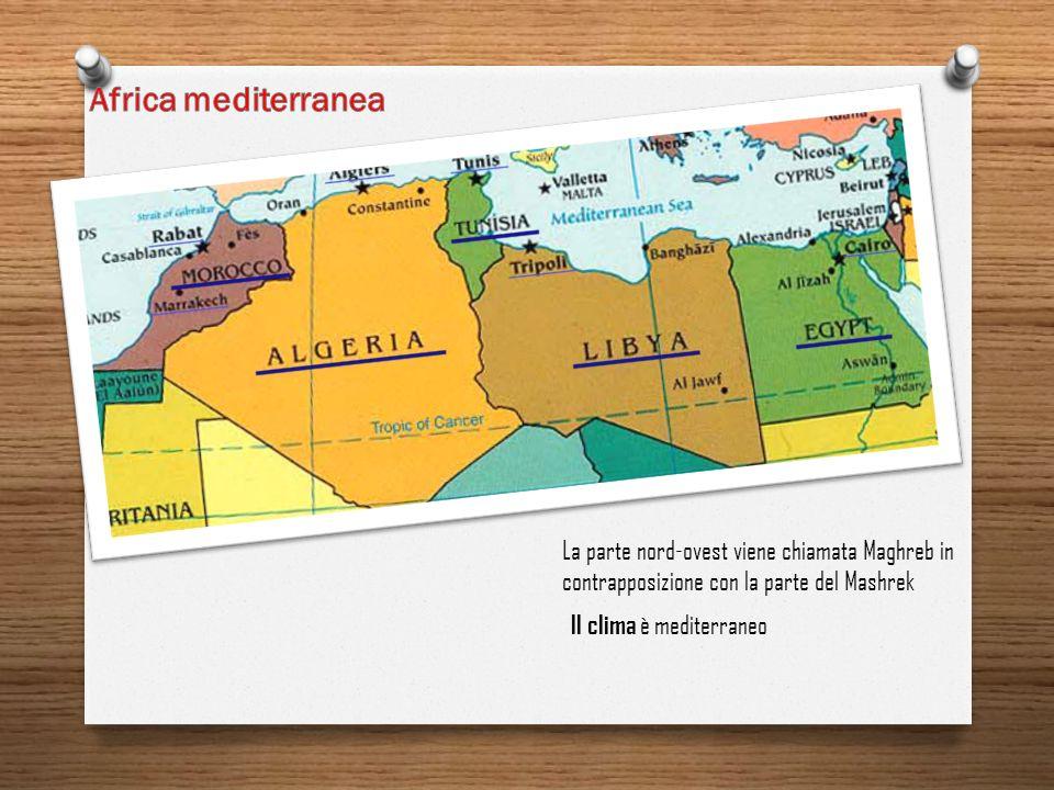 La parte nord-ovest viene chiamata Maghreb in contrapposizione con la parte del Mashrek Il clima è mediterraneo
