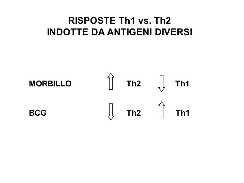 RISPOSTE Th1 vs. Th2 INDOTTE DA ANTIGENI DIVERSI MORBILLO Th2Th1 BCGTh2 Th1