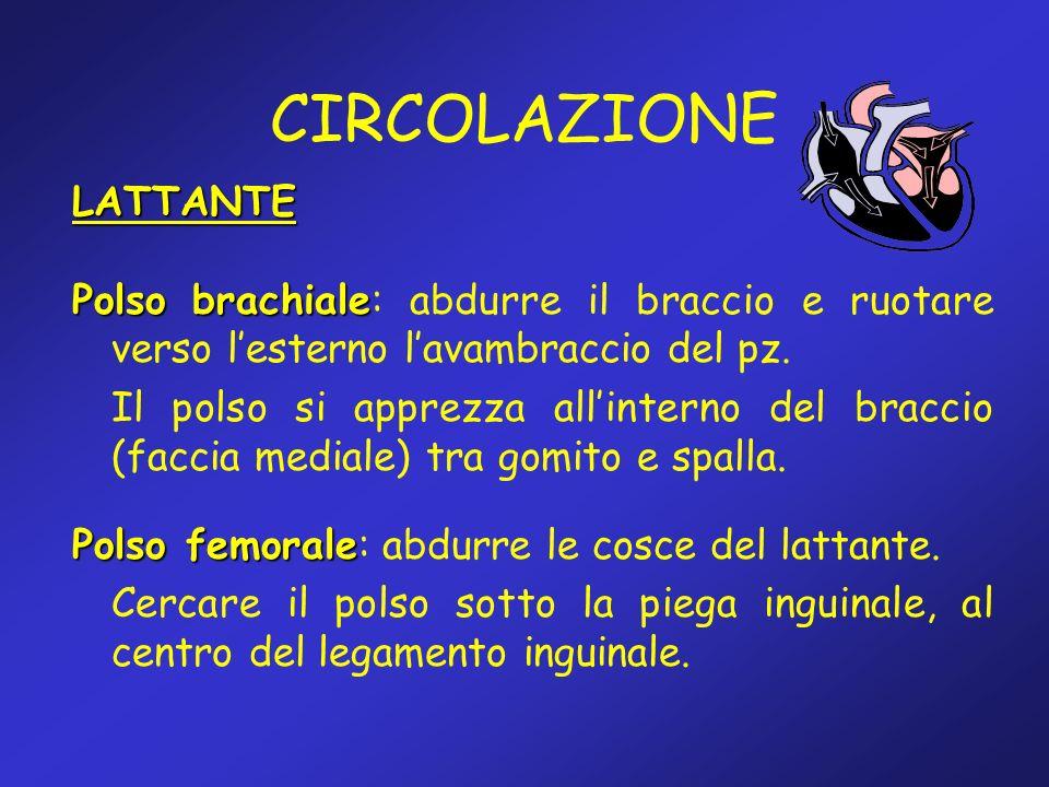 CIRCOLAZIONE LATTANTE Polso brachiale Polso brachiale: abdurre il braccio e ruotare verso lesterno lavambraccio del pz. Il polso si apprezza allintern
