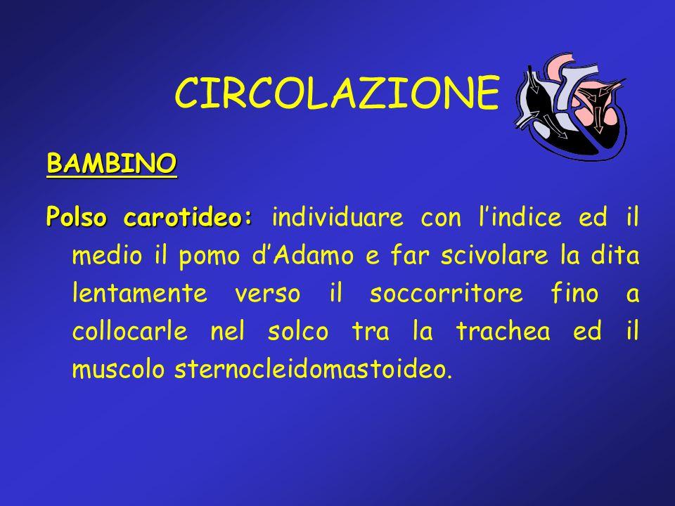 CIRCOLAZIONE BAMBINO Polso carotideo: Polso carotideo: individuare con lindice ed il medio il pomo dAdamo e far scivolare la dita lentamente verso il