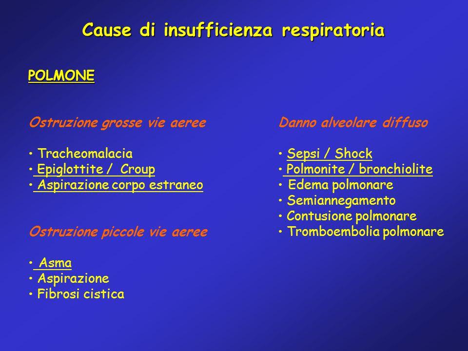 Cause di insufficienza respiratoria POLMONE Ostruzione grosse vie aeree Tracheomalacia Epiglottite / Croup Aspirazione corpo estraneo Ostruzione picco