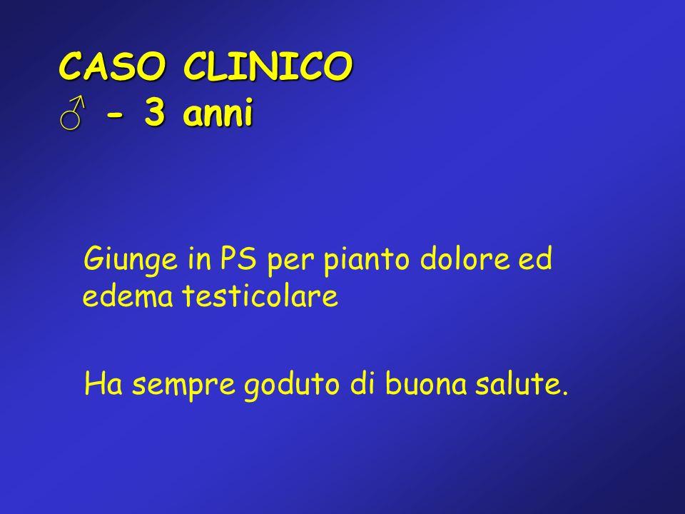 CASO CLINICO - 3 anni Giunge in PS per pianto dolore ed edema testicolare Ha sempre goduto di buona salute.