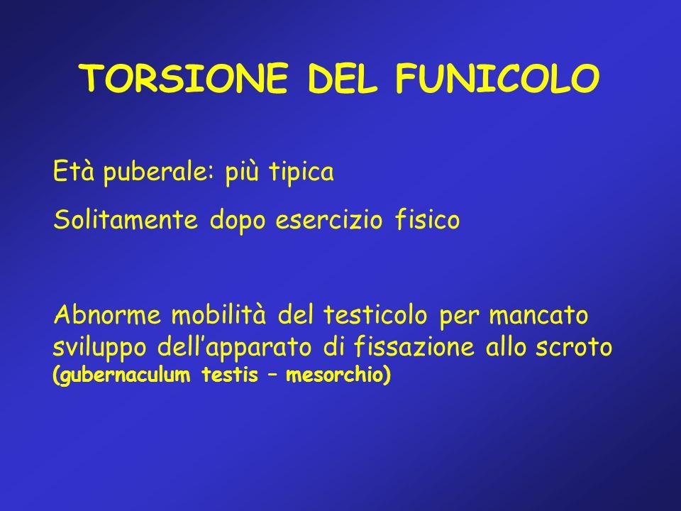 TORSIONE DEL FUNICOLO Età puberale: più tipica Solitamente dopo esercizio fisico Abnorme mobilità del testicolo per mancato sviluppo dellapparato di f