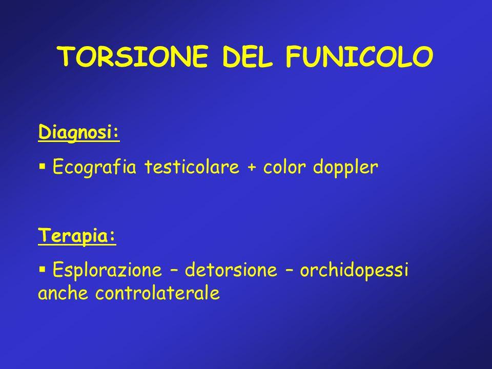TORSIONE DEL FUNICOLO Diagnosi: Ecografia testicolare + color doppler Terapia: Esplorazione – detorsione – orchidopessi anche controlaterale
