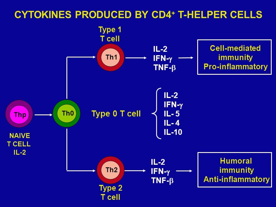 ASMA LIEVE 1.Beta2 agonisti inalatori 2.Aggiungere steroidi inalatori 3.Considerare steroidi orali ASMA MODERATO 1.Beta2 agonisti inalatori + steroidi orali 2.Aggiungere steroidi inalatori 3.Trattare come asma grave ASMA GRAVE 1.Beta2 agonisti inalatori + O 2 + steroidi orali o ev 2.Ipratropio bromuro inalatorio 3.Aminofillina ev ASMA CON PERICOLO DI VITA 1.O2 + Beta2 agonisti inalatori + ipratropio bromuro inalatorio + steroidi ev + idratazione ev 2.Considerare Beta2 agonisti parenterali 3.Aminofillina ev + considerare intubazione + trasferire in terapia intensiva Terapia asma cronico