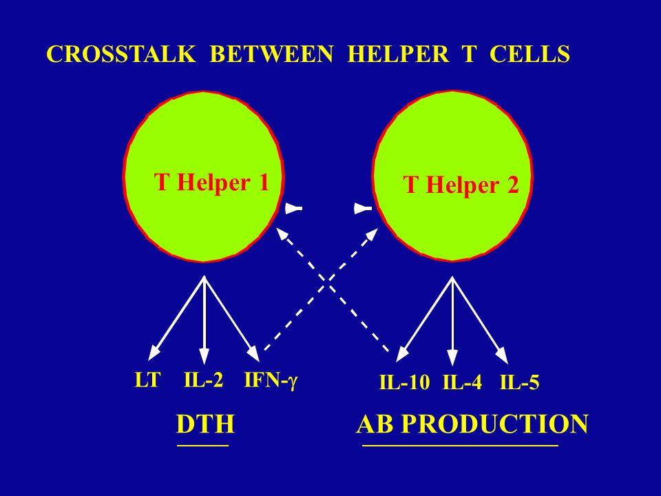 Thp Th0 Th1 IL-4, IL-5, IL-10 CELL- MEDIATED IMMUNITY HUMORAL IMMUNITY Type 1 and Type 2 cytokines Type 1 suppress Type 2 Type 2 suppress Type 1 IMMUNOPATHOLOGY: ALLERGY IMMUNOPATHOLOGY: AUTOIMMUNITY THE TH1, TH2, Tr1 NETWORK DC Dendritic cell Naive T cell IL-2, IFN-, TNF- Repeated Ag stimulation + IL-12 Th2 IL-10, TGF- SUPPRESSION Tr1 Repeated Ag stimulation + IL-4 Repeated Ag stimulation + IL-10