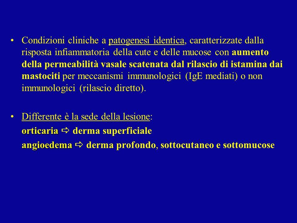 Condizioni cliniche a patogenesi identica, caratterizzate dalla risposta infiammatoria della cute e delle mucose con aumento della permeabilità vasale