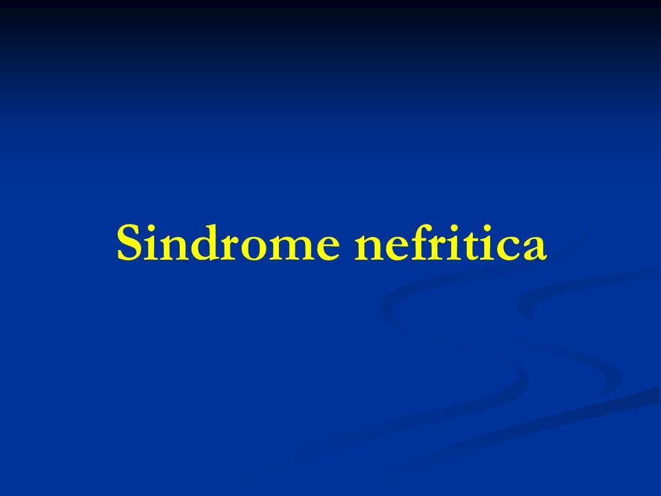 Sindrome nefritica