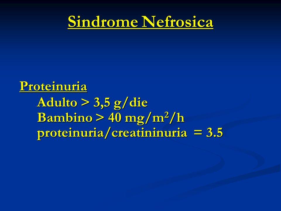 Sindrome Nefrosica Proteinuria Adulto > 3,5 g/die Adulto > 3,5 g/die Bambino > 40 mg/m 2 /h Bambino > 40 mg/m 2 /h proteinuria/creatininuria = 3.5 proteinuria/creatininuria = 3.5