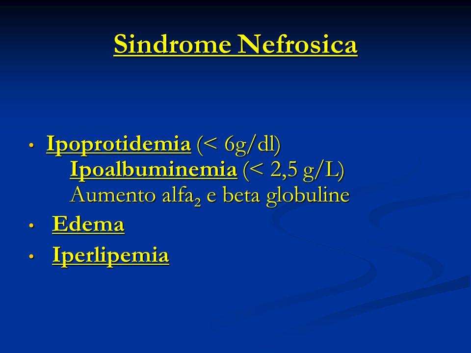 Ipoalbuminemia (<2,5 g%) Aumento escrezione urinaria Inadeguata sintesi epatica (normalmente 12-14 g/die che può aumentare fino a tre volte)