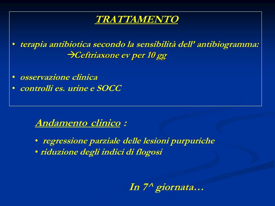 TRATTAMENTO terapia antibiotica secondo la sensibilità dell antibiogramma: Ceftriaxone ev per 10 gg Ceftriaxone ev per 10 gg osservazione clinica controlli es.