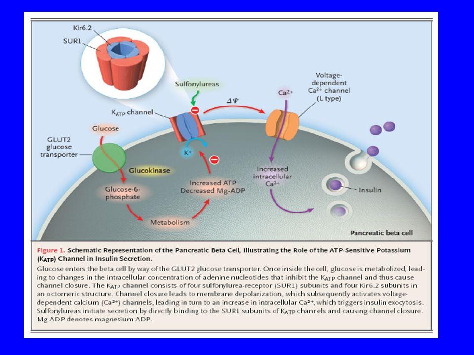 La presenza di determiate mutazioni riducono la capacità della beta cellula di secenere insulina predisponendo il soggetto a sviluppare diabete mellito neonatale permanente e transitorio.