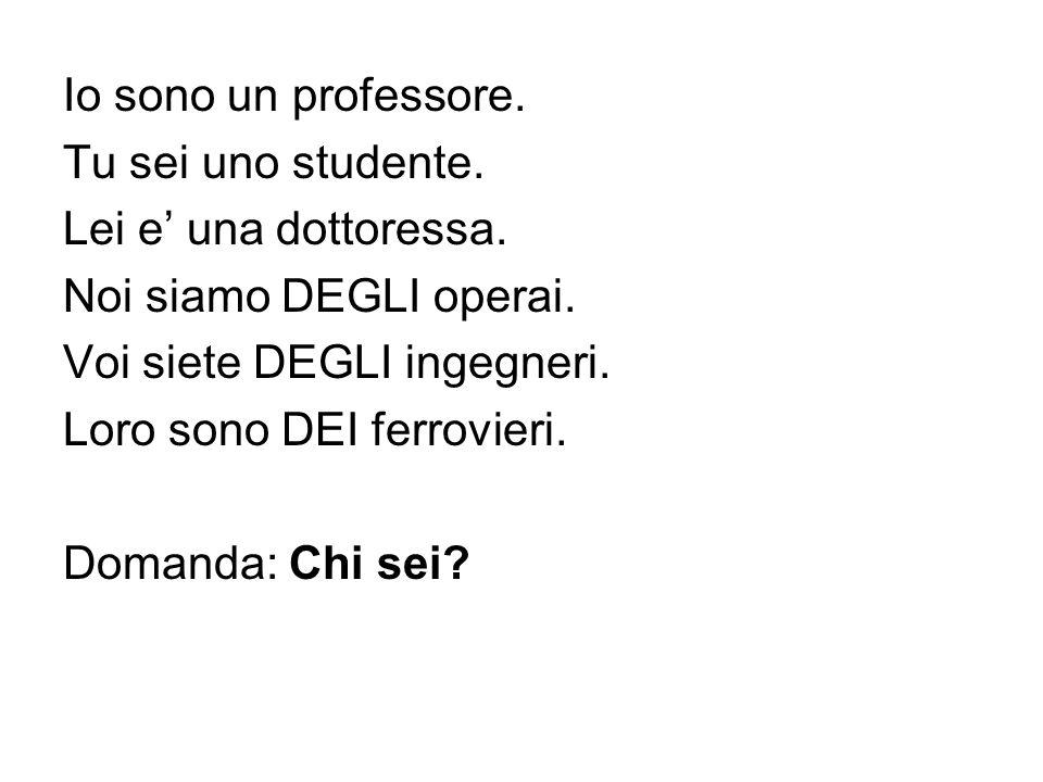 Io sono un professore. Tu sei uno studente. Lei e una dottoressa. Noi siamo DEGLI operai. Voi siete DEGLI ingegneri. Loro sono DEI ferrovieri. Domanda