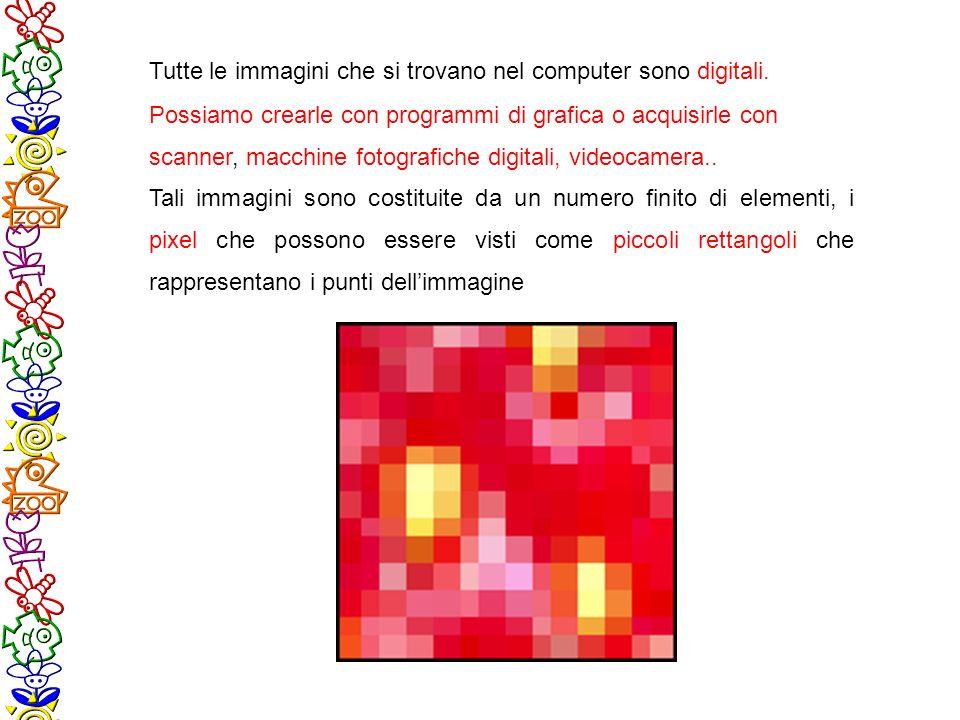 Tutte le immagini che si trovano nel computer sono digitali.
