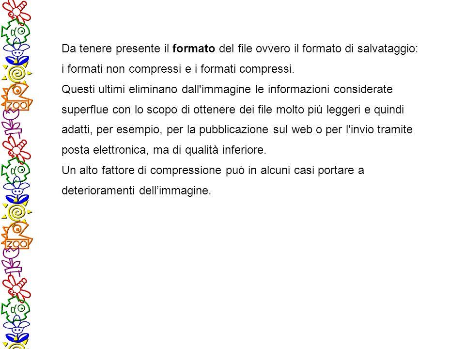 Da tenere presente il formato del file ovvero il formato di salvataggio: i formati non compressi e i formati compressi. Questi ultimi eliminano dall'i