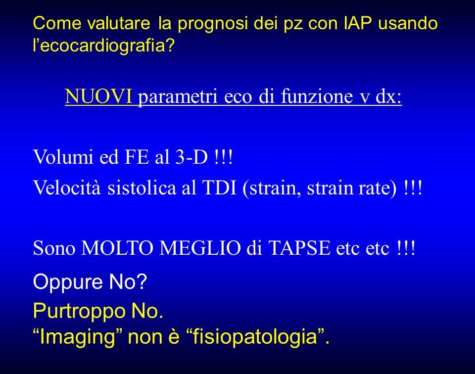 Come valutare la prognosi dei pz con IAP usando lecocardiografia? NUOVI parametri eco di funzione v dx: Volumi ed FE al 3-D !!! Velocità sistolica al