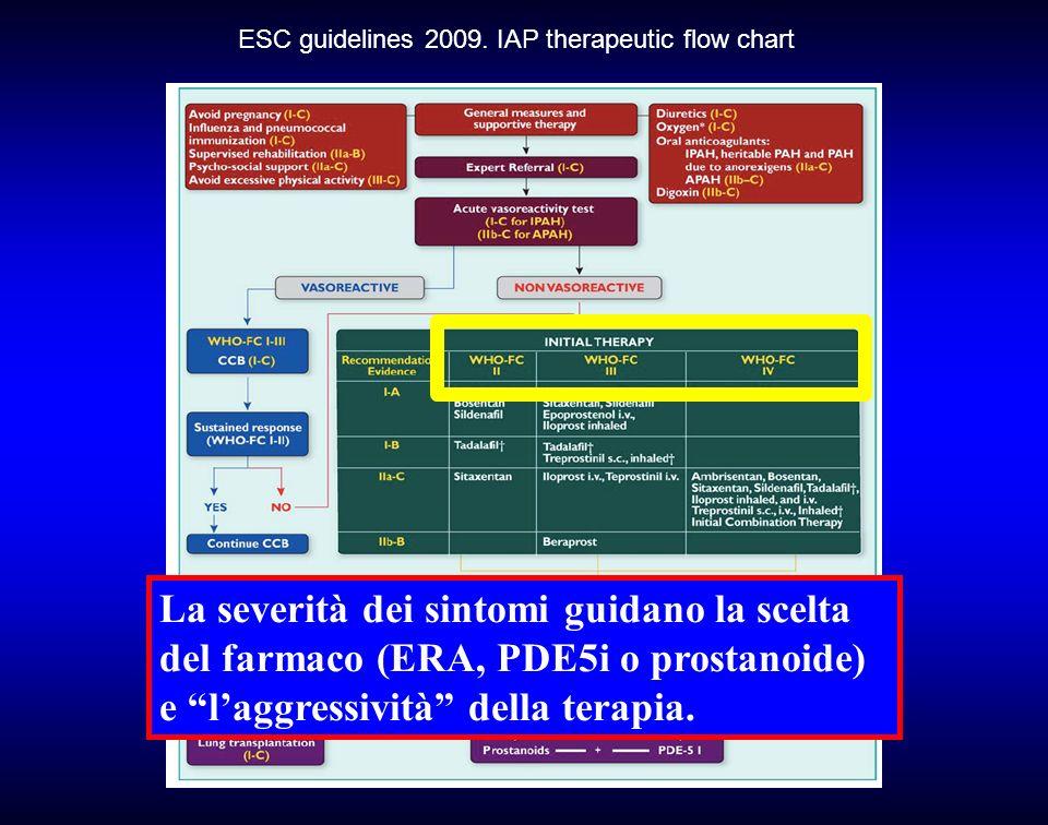 ESC guidelines 2009. IAP therapeutic flow chart La severità dei sintomi guidano la scelta del farmaco (ERA, PDE5i o prostanoide) e laggressività della