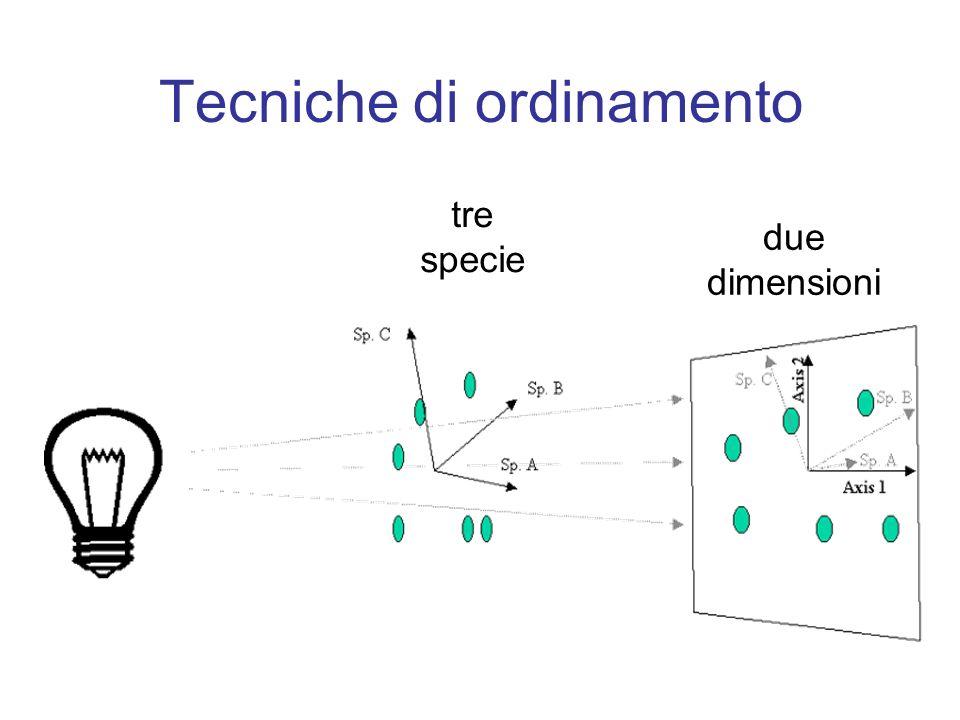 Tecniche di ordinamento tre specie due dimensioni