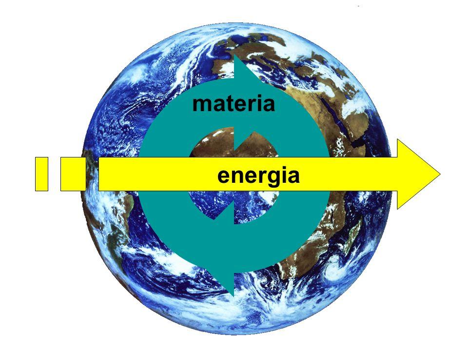 La materia circola negli/fra gli ecosistemi Esistono comparti ben identificabili, che tuttavia scambiano materia fra loro: –latmosfera– la litosfera –lidrosfera– la biosfera I processi di scambio sono di natura: –biologica –geologica –chimica Cicli biogeochimici