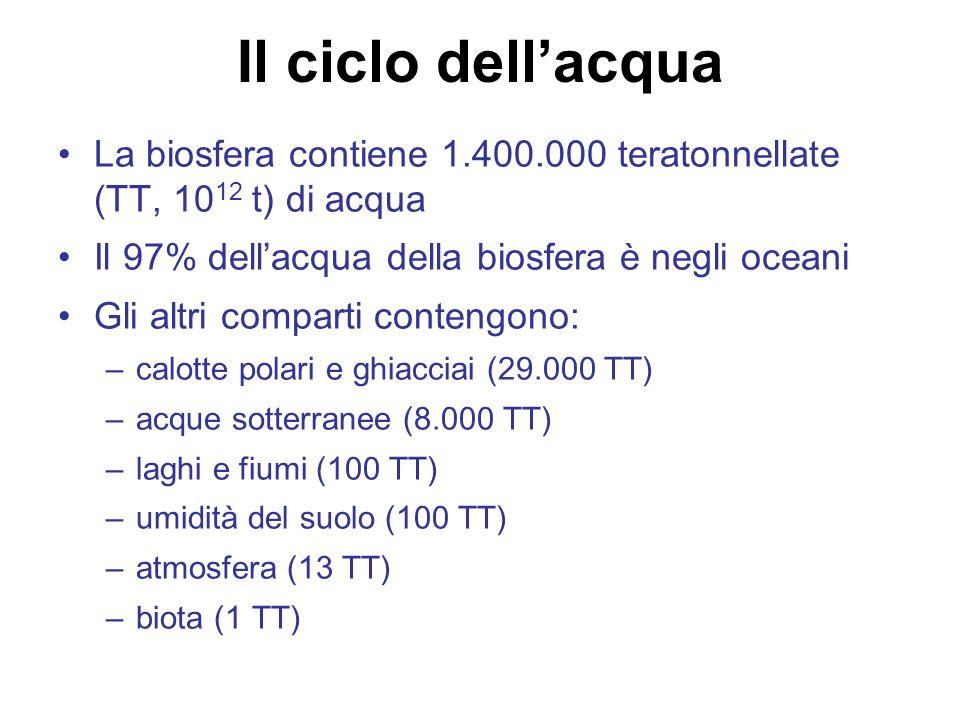 La biosfera contiene 1.400.000 teratonnellate (TT, 10 12 t) di acqua Il 97% dellacqua della biosfera è negli oceani Gli altri comparti contengono: –calotte polari e ghiacciai (29.000 TT) –acque sotterranee (8.000 TT) –laghi e fiumi (100 TT) –umidità del suolo (100 TT) –atmosfera (13 TT) –biota (1 TT) Il ciclo dellacqua