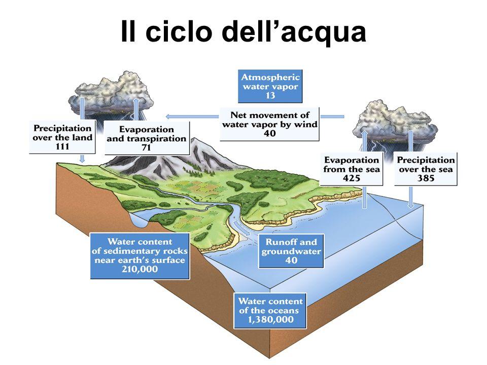 Il ciclo dellacqua è spinto dallenergia solare (utilizza ¼ dellenergia disponibile sotto forma di radiazione incidente) Le precipitazioni sulle terre emerse superano levaporazione dalle stesse di 40 TT anno -1 (che rappresentano la portata dei fiumi) Questa differenza corrisponde a quella fra levaporazione delle acque degli oceani e le precipitazioni in mare Infatti, queste 40 TT anno -1 sono il vapore (le nuvole!) che i venti spingono dal mare verso le terre emerse Il ciclo dellacqua