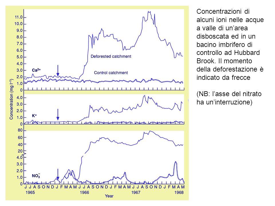 Concentrazioni di alcuni ioni nelle acque a valle di unarea disboscata ed in un bacino imbrifero di controllo ad Hubbard Brook.
