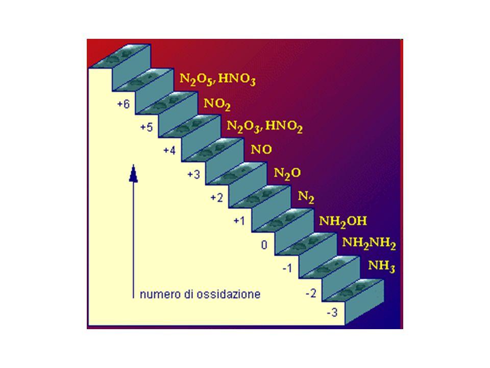 Comparto Quantità (10 9 t N) crosta terrestre14.000.000 Litosferasedimenti4.000.000 pedosfera610 Atmosfera 3.900.000 Idrosfera 23.000 Biosfera 13 Utilizzabile in minima parte!
