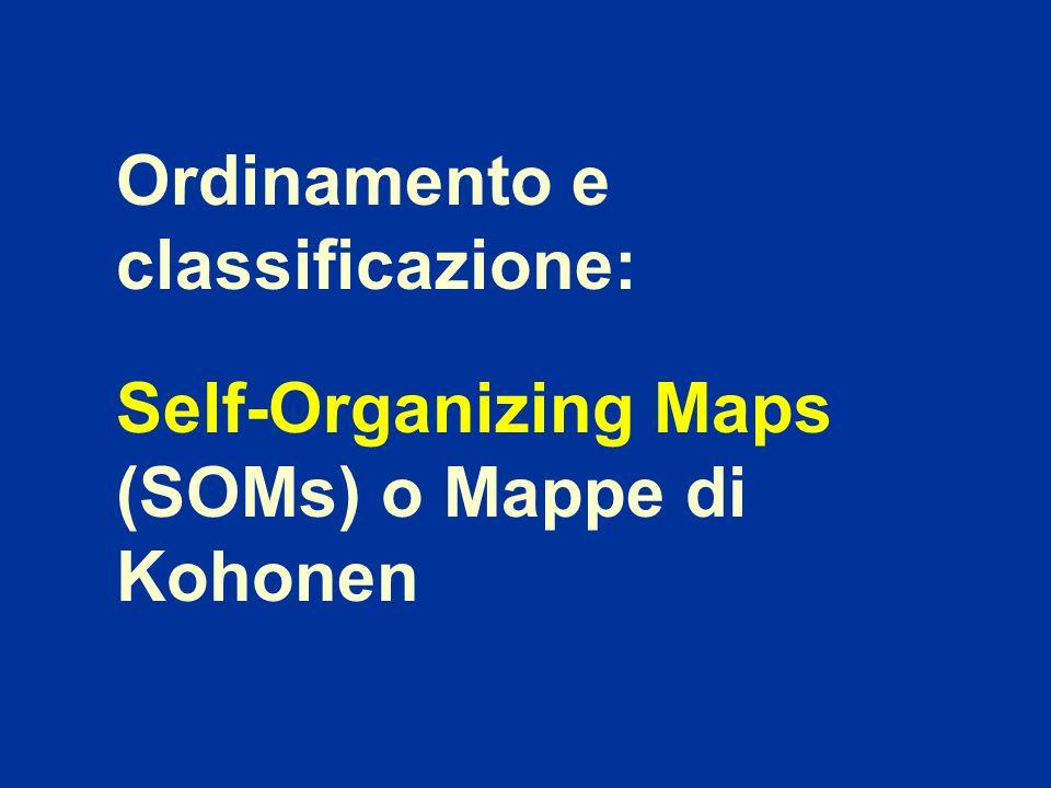Ordinamento e classificazione: Self-Organizing Maps (SOMs) o Mappe di Kohonen