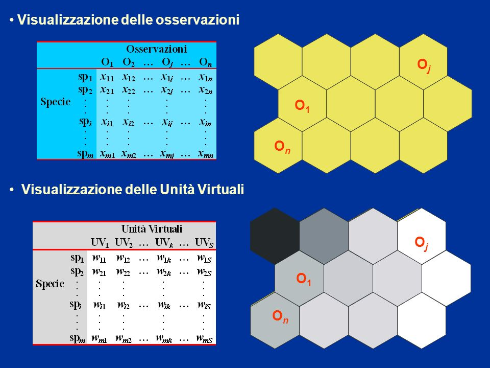 O 1 O j O n Visualizzazione delle osservazioni Visualizzazione delle Unità Virtuali UV 1 UV 2 UV k UV S...