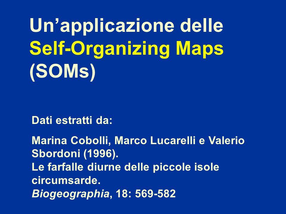Dati estratti da: Marina Cobolli, Marco Lucarelli e Valerio Sbordoni (1996). Le farfalle diurne delle piccole isole circumsarde. Biogeographia, 18: 56