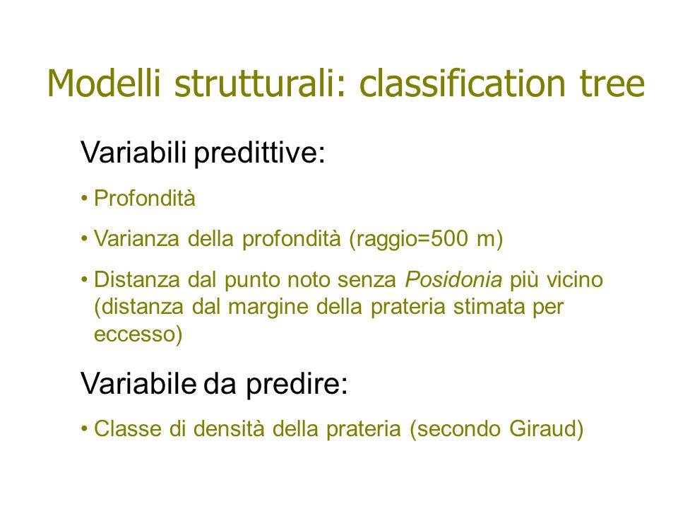 Variabili predittive: Profondità Varianza della profondità (raggio=500 m) Distanza dal punto noto senza Posidonia più vicino (distanza dal margine del