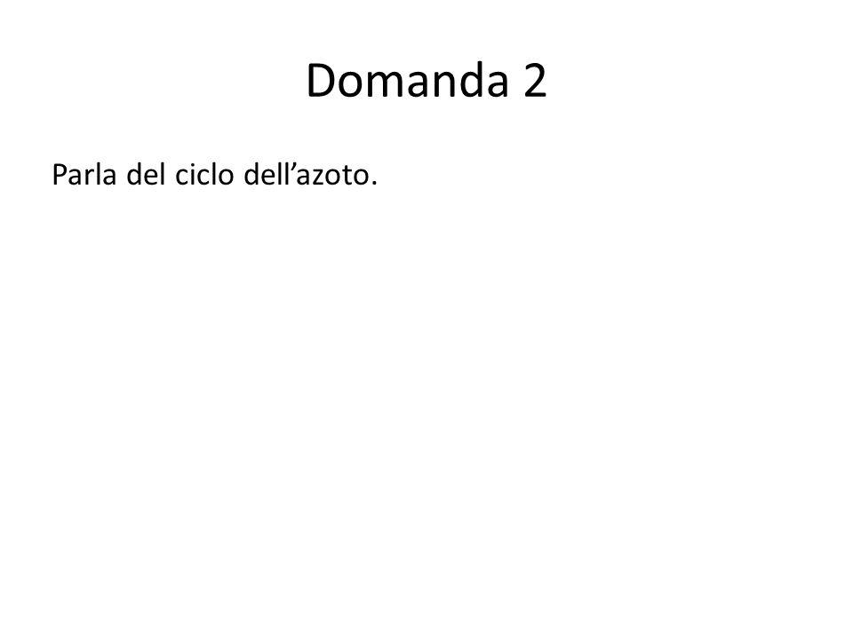 Domanda 2 Parla del ciclo dellazoto.