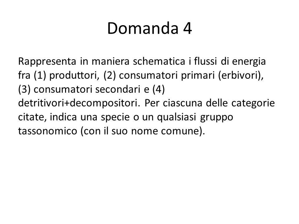 Domanda 4 Rappresenta in maniera schematica i flussi di energia fra (1) produttori, (2) consumatori primari (erbivori), (3) consumatori secondari e (4) detritivori+decompositori.