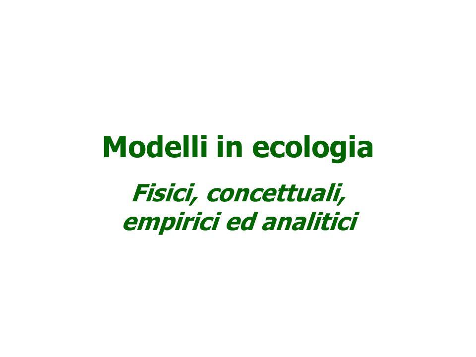 USO COMBINATO DI DIVERSE TIPOLOGIE DI MODELLI Analisi della produttività dello Stagno del Calich (Sardegna)