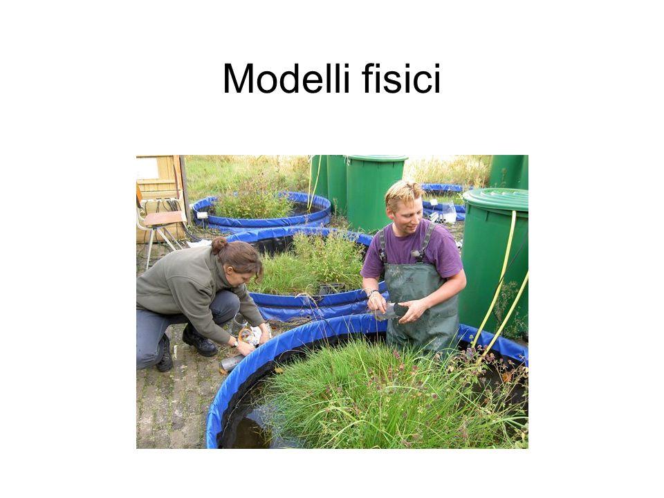 Problema applicativo #2: 1.Analisi di sensibilità del modello previsionale 2.Identificazione dei fattori ambientali che determinano le maggiori variazioni nella risposta del modello 3.Definizione di possibili strategie per la gestione dellambiente