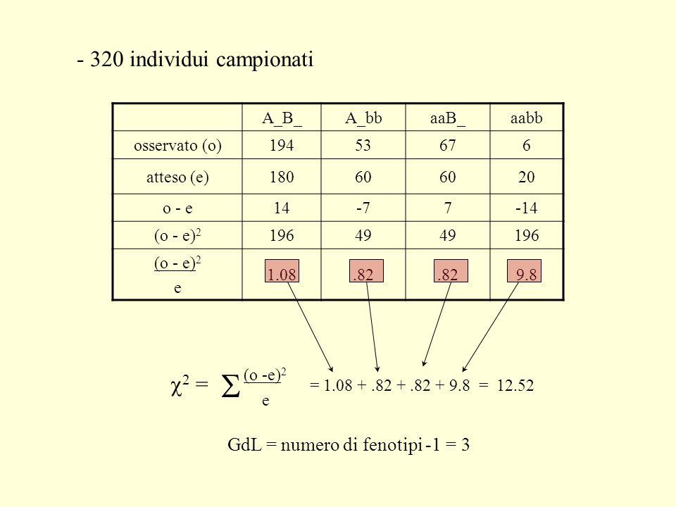 - 320 individui campionati A_B_A_bbaaB_aabb osservato (o)19453676 atteso (e)18060 20 o - e14-77-14 (o - e) 2 19649 196 (o - e) 2 e 1.08.82 9.8 (o -e)