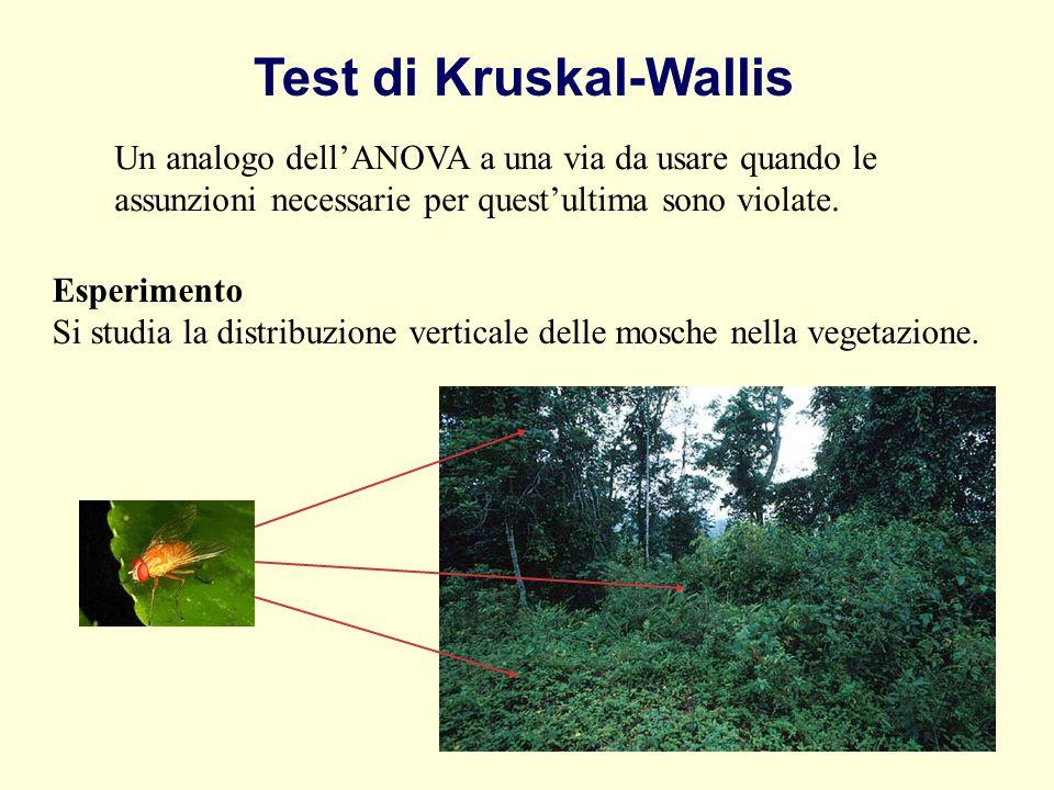 Test di Kruskal-Wallis Esperimento Si studia la distribuzione verticale delle mosche nella vegetazione. Un analogo dellANOVA a una via da usare quando