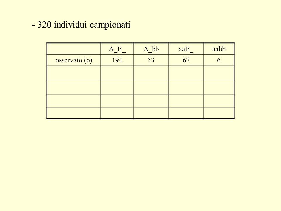 - 320 individui campionati A_B_A_bbaaB_aabb osservato (o)19453676