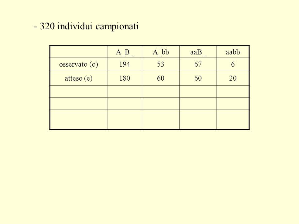- 320 individui campionati A_B_A_bbaaB_aabb osservato (o)19453676 atteso (e)18060 20