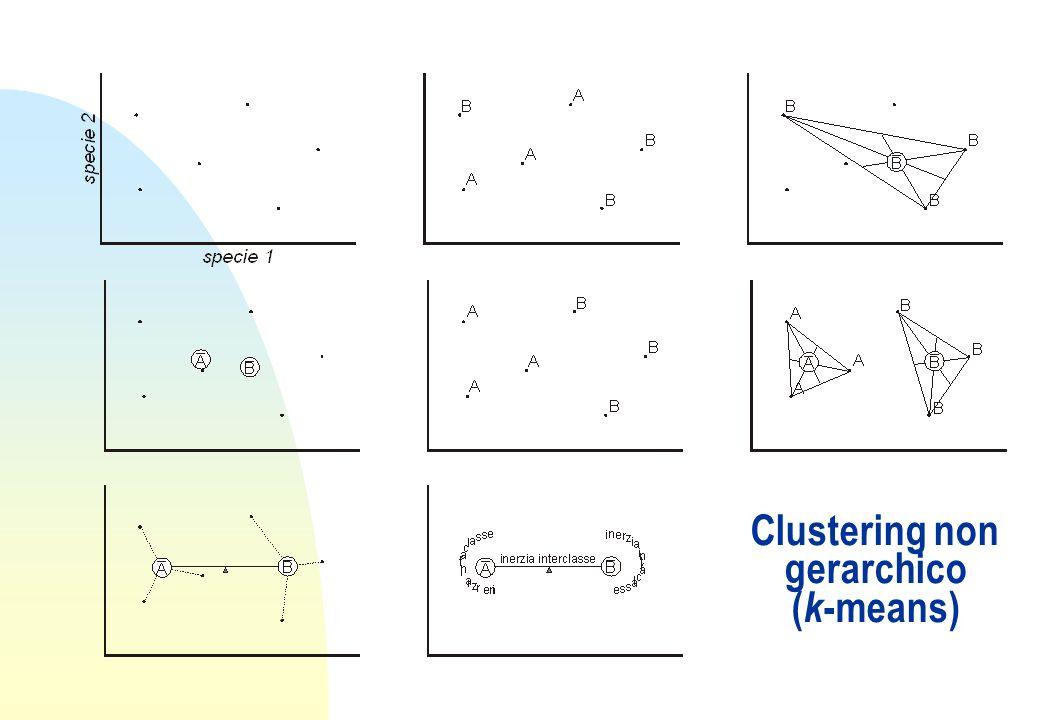 Clustering non gerarchico ( k -means)