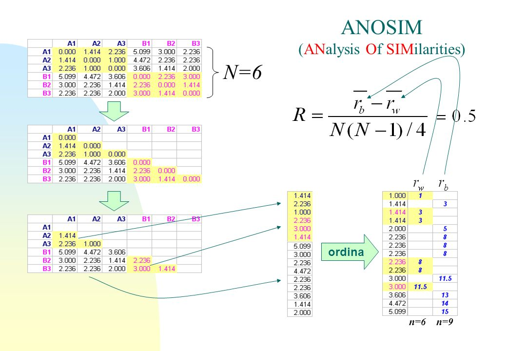 ordina ANOSIM (ANalysis Of SIMilarities) n=6n=9 N=6