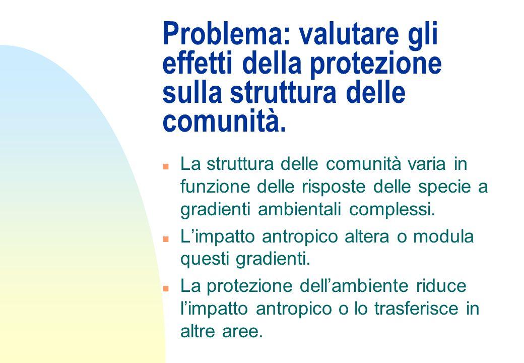 Problema: valutare gli effetti della protezione sulla struttura delle comunità. n La struttura delle comunità varia in funzione delle risposte delle s
