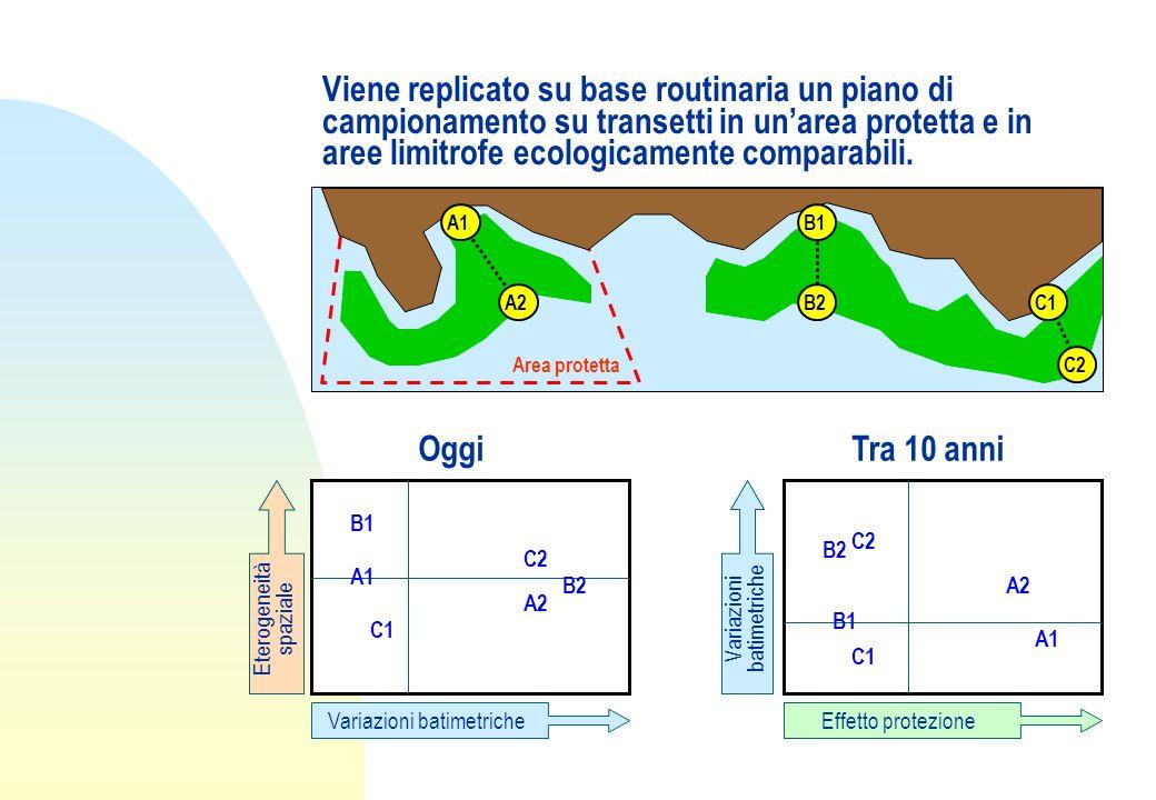 Viene replicato su base routinaria un piano di campionamento su transetti in unarea protetta e in aree limitrofe ecologicamente comparabili. Area prot