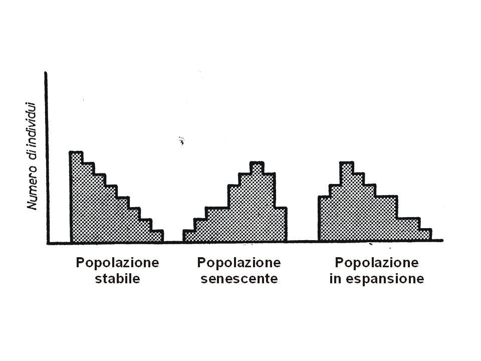 Esperimenti di G.F.