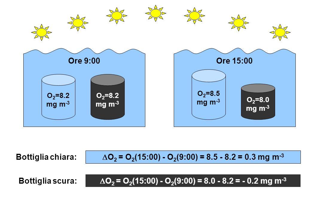 O 2 =8.2 mg m -3 O 2 =8.5 mg m -3 O 2 =8.0 mg m -3 Ore 9:00Ore 15:00 O 2 = O 2 (15:00) - O 2 (9:00) = 8.5 - 8.2 = 0.3 mg m -3 O 2 = O 2 (15:00) - O 2