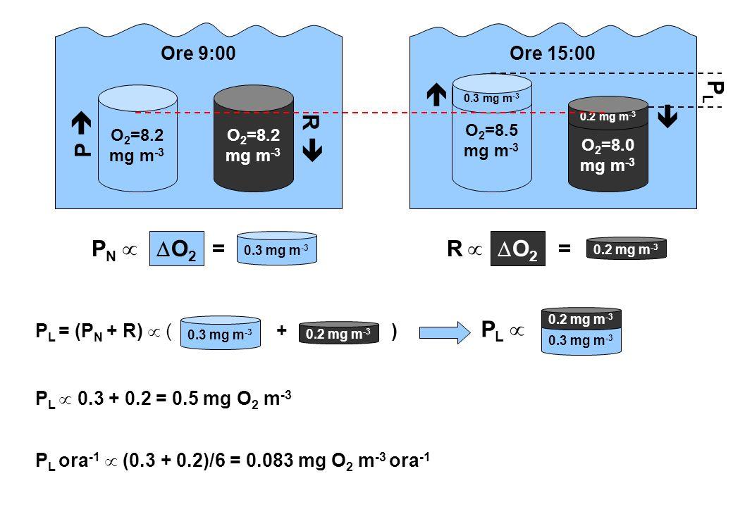O 2 =8.2 mg m -3 O 2 =8.5 mg m -3 O 2 =8.0 mg m -3 Ore 9:00Ore 15:00 P L 0.3 + 0.2 = 0.5 mg O 2 m -3 0.3 mg m -3 0.2 mg m -3 P L P L ora -1 (0.3 + 0.2
