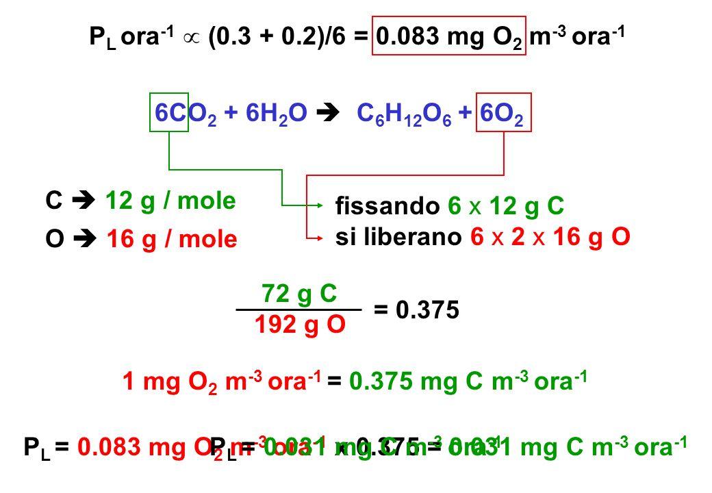 6CO 2 + 6H 2 O C 6 H 12 O 6 + 6O 2 1 mg O 2 m -3 ora -1 = 0.375 mg C m -3 ora -1 P L = 0.083 mg O 2 m -3 ora -1 x 0.375 = 0.031 mg C m -3 ora -1 P L o