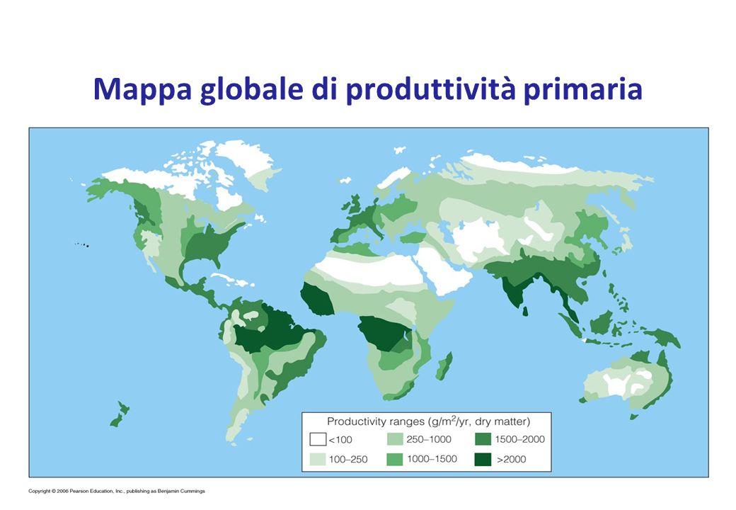 Mappa globale di produttività primaria