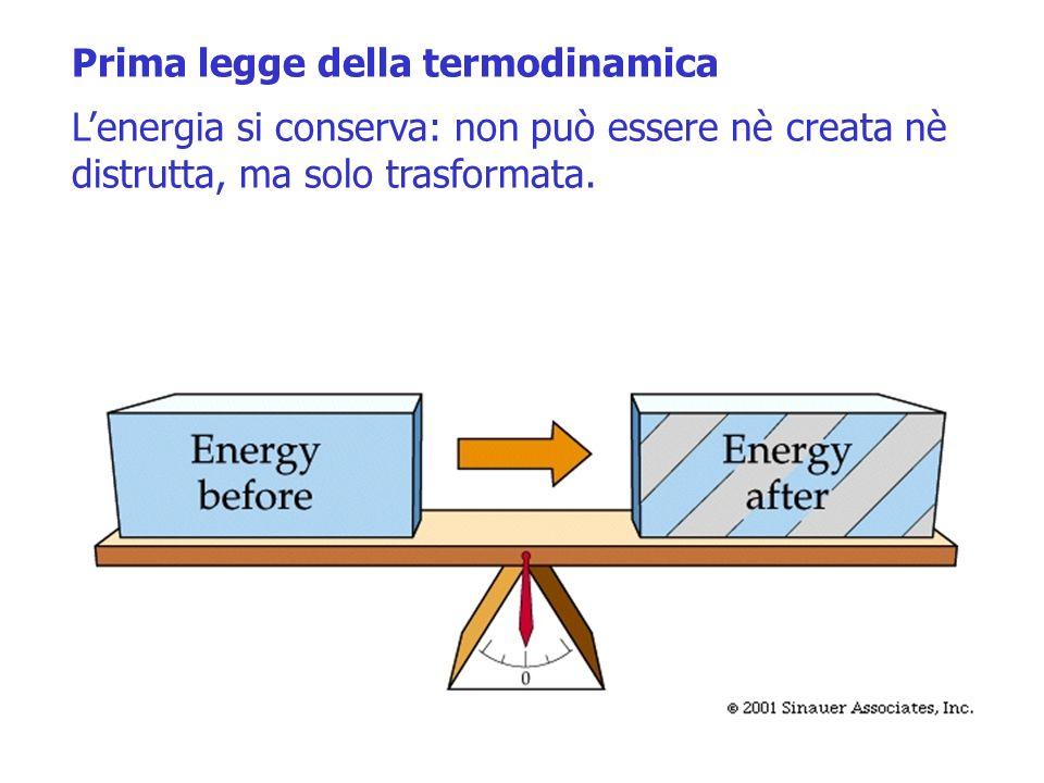 Prima legge della termodinamica Lenergia si conserva: non può essere nè creata nè distrutta, ma solo trasformata. Seconda legge della termodinamica Le